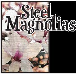 Steel Magnolias 2010